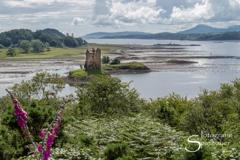 Schottland 3267