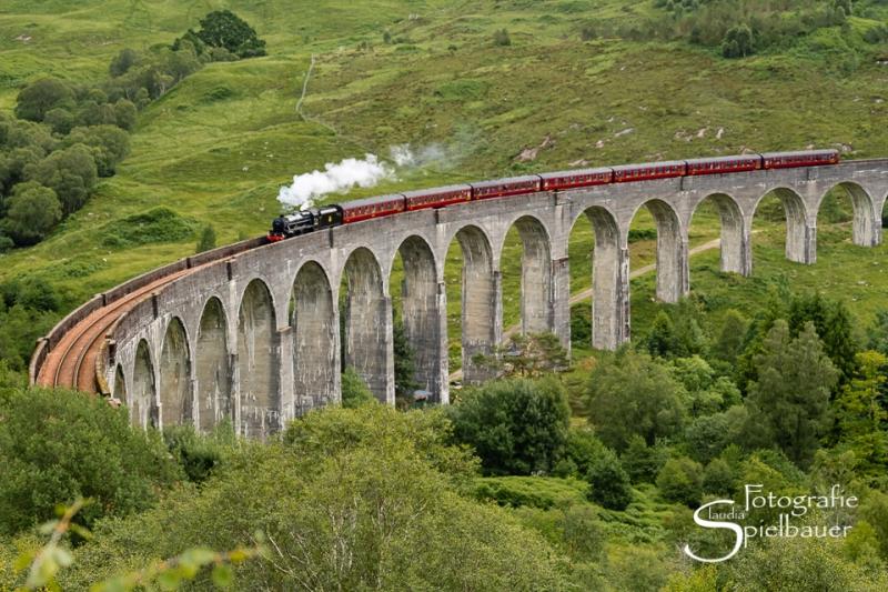 Schottland 3351