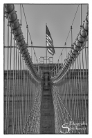 New York--5