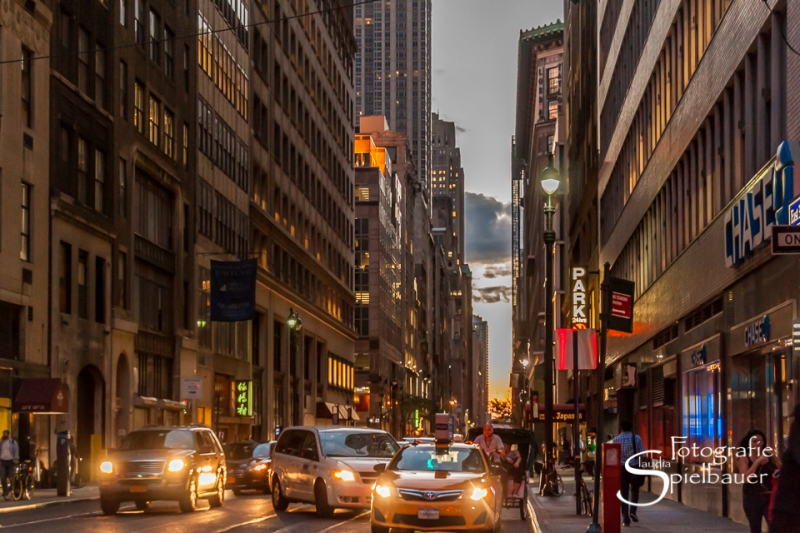 New York 0373