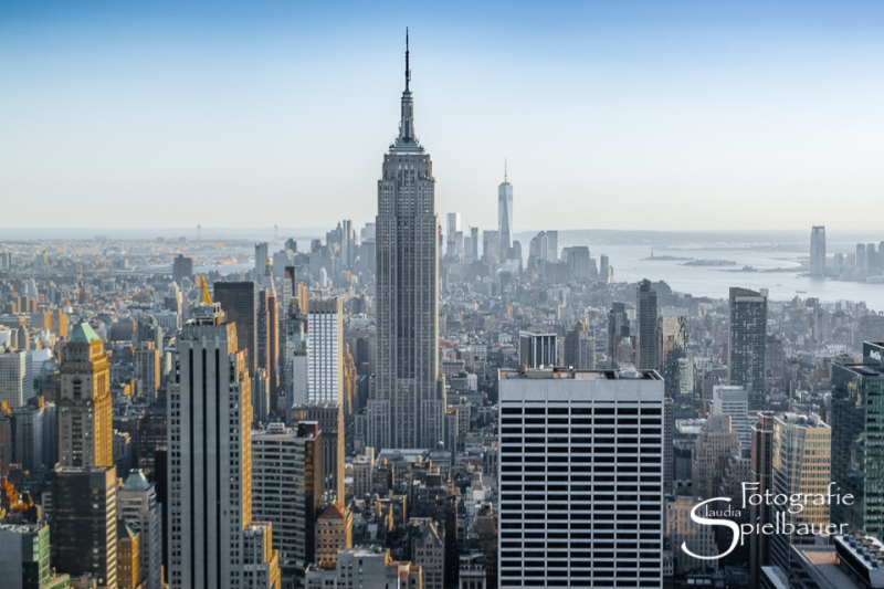 New York 1009
